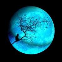 WingIt Thursday Drama 5/12/16 Avatar?id=1599901&m=75&t=1459270192