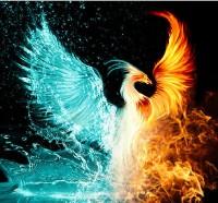 WingIt Thursday Drama 7/21/16 Avatar?id=1600929&m=75&t=1459778869